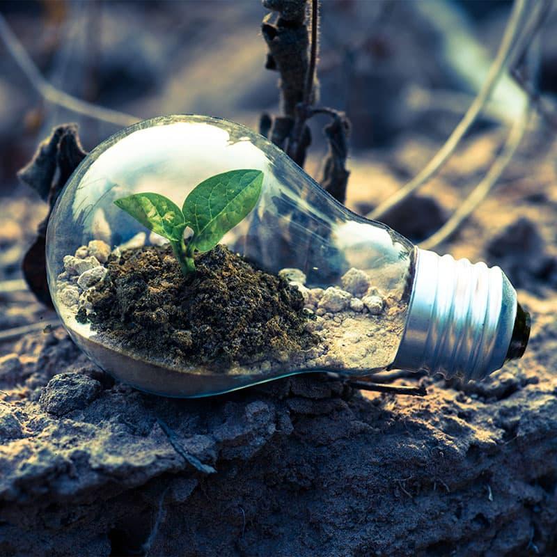 Mutuo green: al via la sperimentazione bancaria